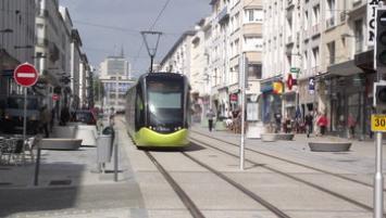Brest Pinel