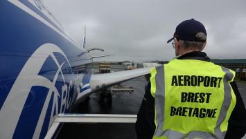 L'aéroport Brest Bretagne organise l'envoi de 2000 cochons reproducteurs vers la Chine