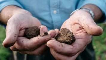 Gaïago est une société bretonne créée en 2014 qui fournit des solutions innovantes - basées sur l'activation sélective de la microbiologie - principalement dans les sols, mais aussi autour de la graine et sur la plante, en vue de revitaliser les agrosystèmes.