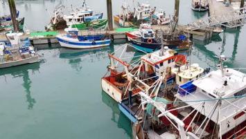 La part revenant à un État serait calculée en fonction notamment de l'activité de pêche dans la zone économique exclusive britannique.