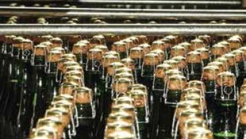 Née en 1953, la coopérative représente aujourd'hui 241 producteurs en Bretagne et 225 en Normandie, soit 466 producteurs