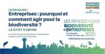 Entreprises : pourquoi et comment agir pour la biodiversité ?