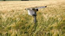 Copeeks est une jeune start-up implantée à Lannion dans les Côtes d'Armor . Son fondateur, Gwenaël Le Lay, un ancien d'Orange a développé une solution connectée pour suivre précisément les parcelles agricoles ou les élevages.