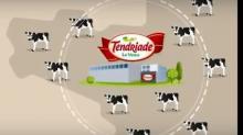 Plus gros employeur de la ville de Châteaubourg située à une trentaine de km de Rennes, l'entreprise agroalimentaire Tendriade totalise près de 650 collaborateurs.