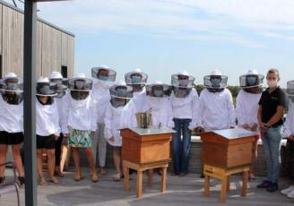 Beecity a installé deux ruches sur la terrasse de Net Plus à Rennes
