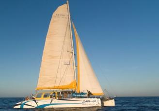 La compagnie maritime Iliens vient d'acquérir son catamaran