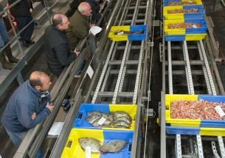 L'activité de la pêche est impactée par la crise du Covid-19.
